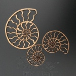 mdf-ammonite-set